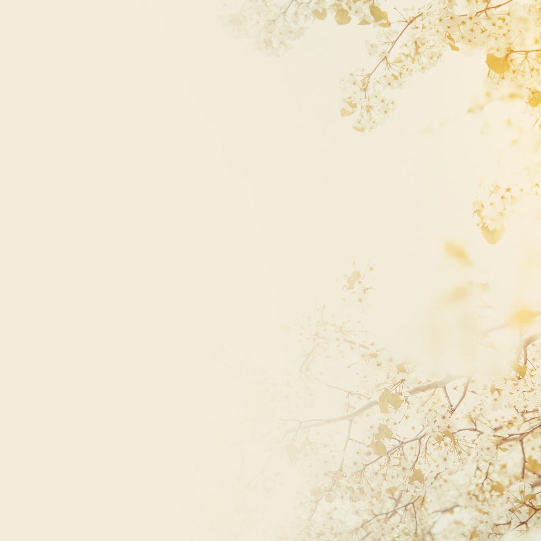 Spiritual Seasons: Rejoicing in Winter
